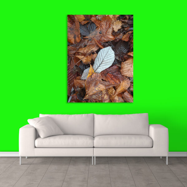Canvas Painting - Modern Nature Art Wall Painting - Gallery Wrapped Wooden Frame (33 inches X 21 inches