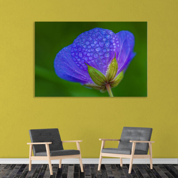 Sehar Crafts Canvas Painting - Modern Nature Flora Art Wall Painting - Gallery Wrapped Wooden Frame (33 inches X 21 inches